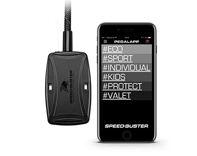 Speed-Buster Pedalbox